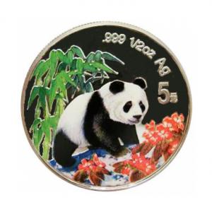 1997 panda 5Y